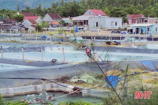 Vì đâu một HTX nuôi tôm ở Hà Tĩnh bị phạt gần 400 triệu đồng?
